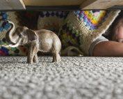 Stainmaster girl elephant
