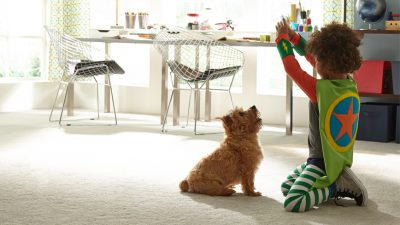 stain-resistant-carpet-for-pets-stainmaster-petprotect
