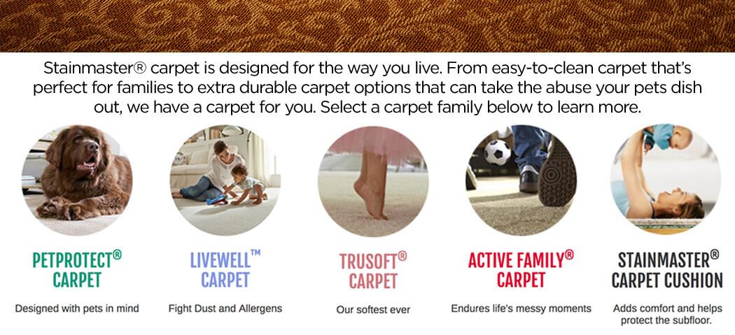 Stainmaster-Carpet-Family