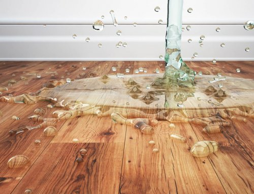 Top 3 Areas That Need Waterproof Flooring in Your Home